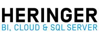 Job Logo - Heringer Consulting GmbH