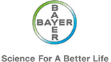 IT Job: IT Strategy & Planning Manager (m/f) - Bayer Business Services GmbH