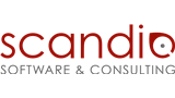 IT Job: IT Consultant / Software Developer (w/m) - Scandio GmbH